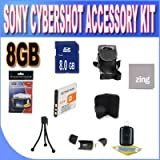 Sony Cyber-Shot DSC-W510/W530/560/570 8GB Accessory Kit (8GB SDHC Card+ Extended Life Battery + Accessory Kit)