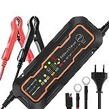 Fourward Batterieladegerät Mit Automatischer Temperaturkompensation,Erhaltungsladegerät...