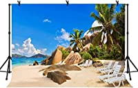 HD 7x5ftトロピカルビーチホリデー背景シービーチロックヤシの木自然の風景結婚式誕生日パーティー旅行家族収集写真スタジオ撮影小道具LYLS695