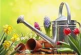 MMPTn Jardinería Fondo Primavera Verano Jardín Planta Flor Regadera Herramientas Primavera Fotografía Telón de Fondo Limpieza Verde Flor Soleado Photo Studio Props