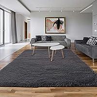 Asvin 5.3x7.5-Feet Fluffy Area Rug Carpet