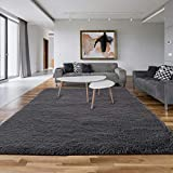 Asvin 5x7 Area Rug, Shag Living Room Area Rug, Luxury Large Area Rug, Non-Skid Fluffy Rugs for Bedroom Home Décor, Soft Plush Furry Rug for Kids Room, Washable Floor Carpet (5.3x7.5 Feet, Grey)