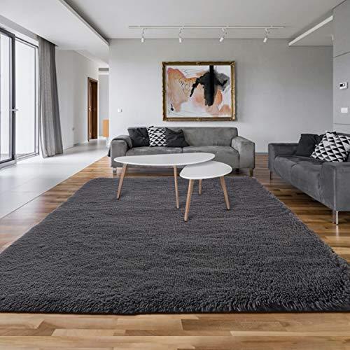 Asvin 5x7 Fluffy Living Room Area Rug, Luxury Large Area Rug, Non-Skid Fleece Carpets for Bedroom Home Décor, Soft Plush Furry Rug for Kids Room, Washable Floor Rug (5.3x7.5 Feet, Grey)