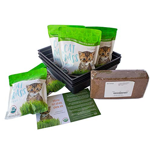 Deluxe Organic Cat Grass Kit - Includes 5 Pounds...