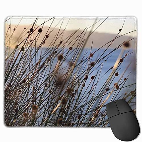 Verwelkte Pflanzen in der untergehenden Sonne Rechteckiges rutschfestes Gaming-Mauspad Tastatur Gummi-Mauspad für Heim- und Büro-Laptops