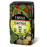 Semillas Batlle 960051PIC Sustrato Cactus 5L, Verde, 32x25x32 cm