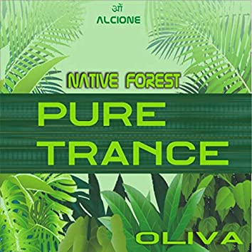 Pure Trance -Native Forest