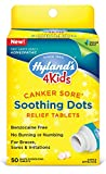 Canker Sore Treatment for Kids by Hyland's 4Kids, Natural Pain Relief of Mouth...