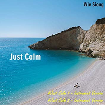 Just Calm (Instrumental Version)