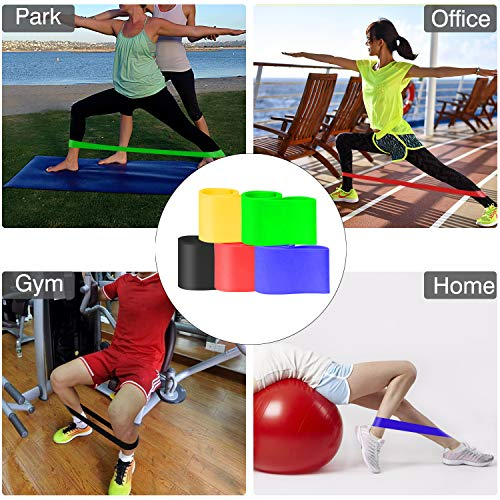 HOSE-PRO Resistance Bands,[Set of 5] Skin-Friendly Resistance Fitness Exercise Loop Bands with 5 Different Resistance Levels-Ideal for Home&Gym,Yoga,Pilates,physiotherapy- GuideandCarryBagIncluded