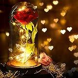 FunPa Rose Eternelle sous Cloche, Kit de roses La Belle et la Bête Rose enchantée, élégante dôme en verre avec base en pin lumières LED pour la Saint-Valentin anniversaire mariage