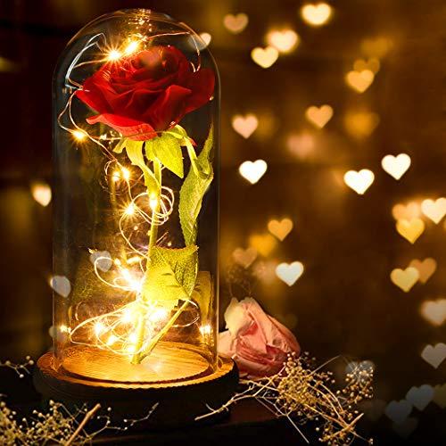 FunPa - Rosa eternal bajo campana - Kit de rosas de La...