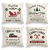 AVOIN Christmas Throw Pillow Cover, 18 x 18 Inch Winter Holiday Rustic Farmhouse Linen Cushion Case for Sofa Couch Set of 4