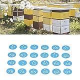 Etichetta numerata, etichetta dell'alveare resistente alla corrosione da 100 pezzi per il controllo delle malattie dell'allevamento di animali nell'apicoltura(Blue and white)
