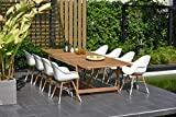 Brampton 9 Piece Outdoor Eucalyptus Extendable Dining Set | Perfect for Patio | White Chairs with Arms and Teak Finish
