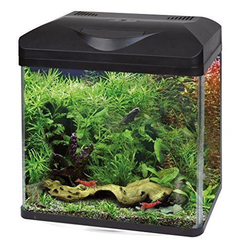 Wave Acquario Laguna LED 50