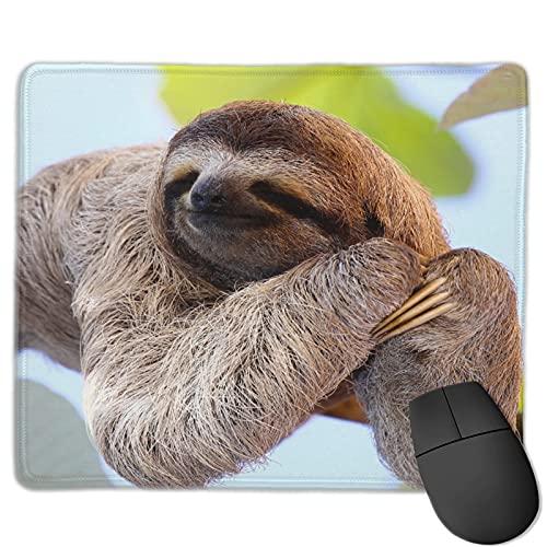 Benutzerdefinierte Office-Mauspad,Ein Faultier mit langem Fell und Klaue auf de,Anti-Rutsch-Gummibasis Gaming Mouse Pad Mat Desk Decor 9.8