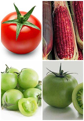 2017 Germination 95% + 6 Groupes Pour Select Graines de fruits 4 en 1 Lot Garden Hot Rare 5 Nutritif
