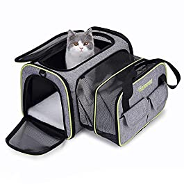 DADYPET Pet carrier, Expandable Travel Bag For Puppy Dogs Cats, Airline Approved Soft Sided Foldable with Wool Rugs for Plane/Car/Train Travel (45 * 33 * 28 cm)