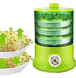 Máquina inteligente de brotes de frijoles Crecen Termostato automático de gran capacidad Semillas verdes que crecen Máquina automática de brotes de soja 220V