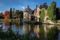大人のパズル1000ピース-大人、家族、子供のためのイングランドの城の池スコットニー城のジグソーパズル。教育ゲーム玩具の家の装飾(27.56inx19.69in)