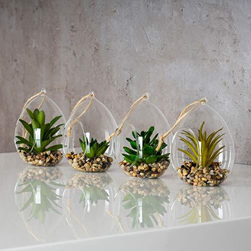 levandeo 4er Set Sukkulenten B x H 8,5x12,5cm Glas Kunstpflanze Grün Kunstblume Deko Tischdeko Wanddeko