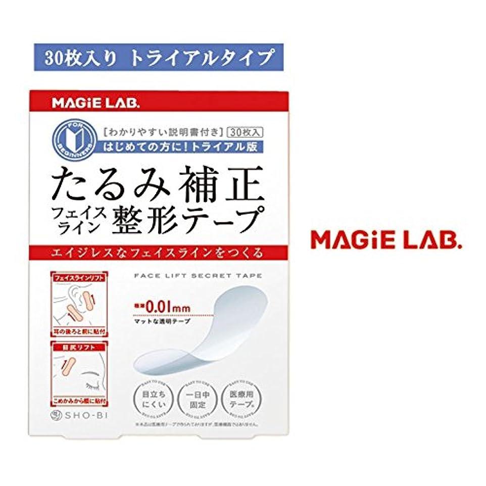 保安竜巻イーウェル整形テープ トライアル MG22106