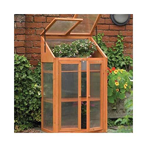 BISEN Serre en bois avec cadre froid et vitrage en polycarbonate transparent 3 niveaux 120 x 69 x 49 cm