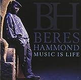 Songtexte von Beres Hammond - Music Is Life