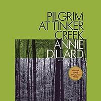 Pilgrim at Tinker Creek's image