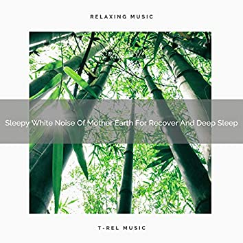 2020 Best: Sleepy White Noise Of Mother Earth For Recover And Deep Sleep