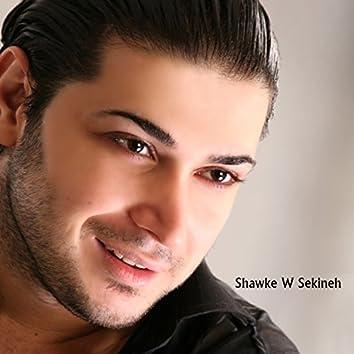 Shawke W Sekineh