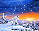 LKAZLL Oil Painting Kits DIY Paint by Numbers Digital Adult Canvas Home Decoration Art Wall Gift Winter Polar Bear 16x20 inch