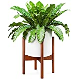 EdenHomes Mid Century Modern Indoor Plant Stand with Pot...