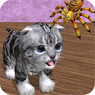 Cu Cat Big Bug Adventure Time [Download]