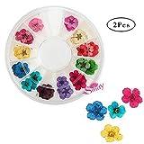 12 colores 3d Arte de uñas seco flores decoración de Manicura Consejos Nail Art Rueda