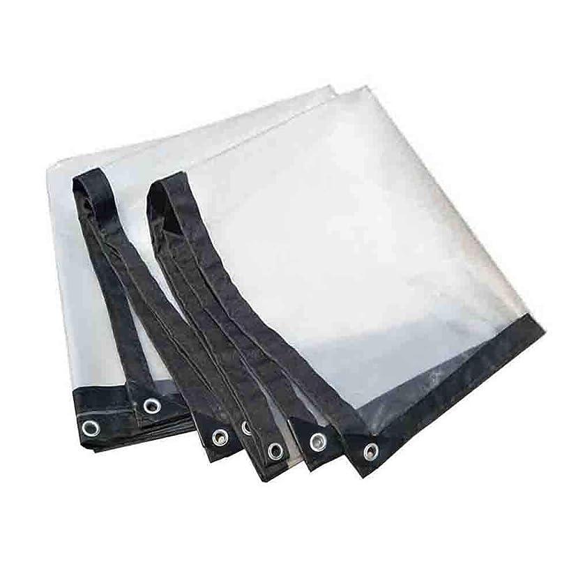 矩形マーチャンダイザー申込みANUO 透明な防水シートの工場キャノピー防水ポリタープカバープラスチックテントタープカバー (Color : Clear, Size : 2x10m/6x30ft)