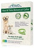 Arava Flea & Tick Prevention Collar - for Dogs &...