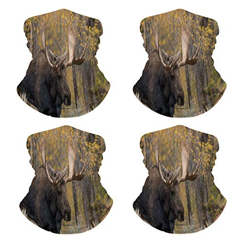 Face Scarf Bull Moose in The Fall Mouth Mask for Traveling NN-109680