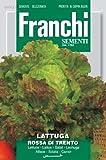 Franchi Samen Roter Salat Rossa of Trento -