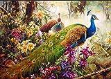 Pintura al óleo por números para adultos, 16 x 20 pulgadas, lienzo digital de...