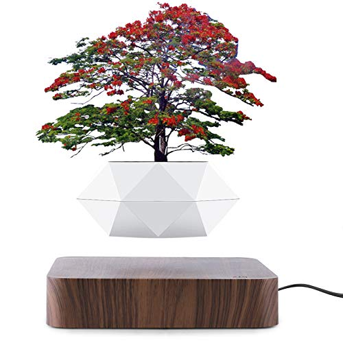 Bavnnro Levitating Air Bonsai Pot ,Rotation Flower Pot Planters, Magnetic Levitation Suspension Flower Floating Pot Potted Plant for Home Office Desktop Decoration