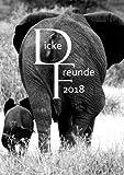 """Kalender 2018 - DIN A5 'Dicke Freunde"""": Wochenkalender - DIN A5 - Eine Woche pro Doppelseite"""