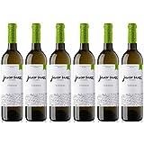 Javier Sanz Vino Blanco Verdejo - 6 Botellas - 4500 ml