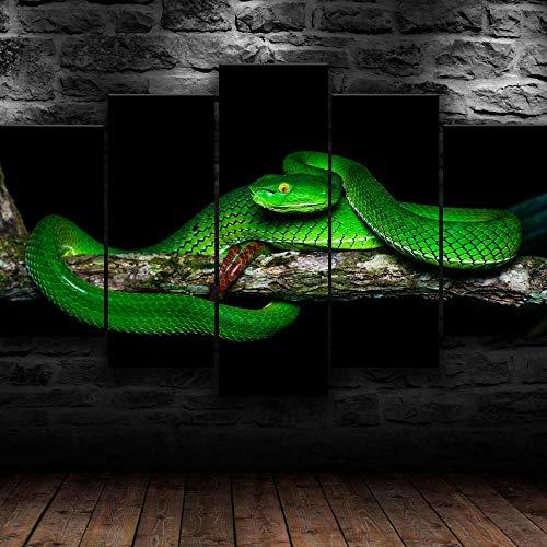 yuanjun 5 Juegos De Pinturas Impresión HD Pintura De Arte De Pared Pintura Moderna Pintura De Decoración del Hogarimpresión De Lienzo XXL Serpiente Verde Pit Viper