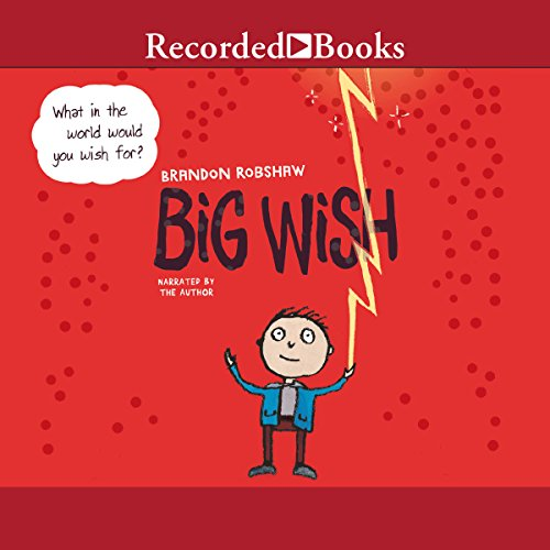 Big Wish audiobook cover art