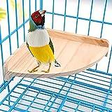DEDC Perca de Madera para Pájaros Pequeños Animales Loros, Soporte de Plataforma de Madera, Trampolín para Jaula, Juguetes de Ejercicio y Sector