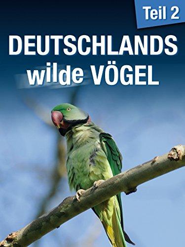 Deutschlands wilde Vögel 2 - Die Reise geht weiter