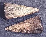 Prehistoric Planet Store - Iguanodon Thumb Spike