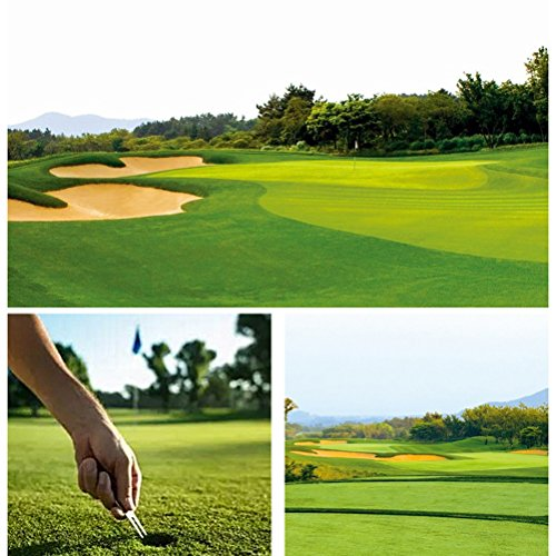 VORCOOL Herramienta de reparación de Golf Divot All Metal Plegable Ball Marker Golf Pitch Fork Pack de 3